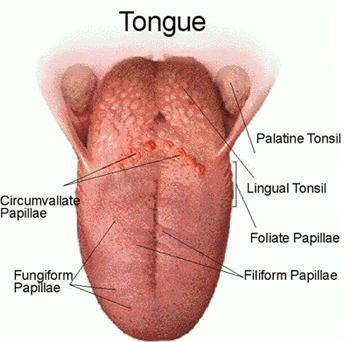 tongue problems and remedies