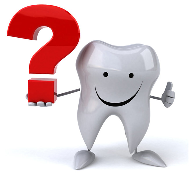 Commonly Asked Questions about the Teeth