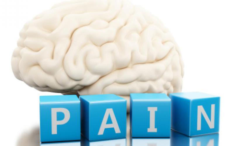 pain in brain
