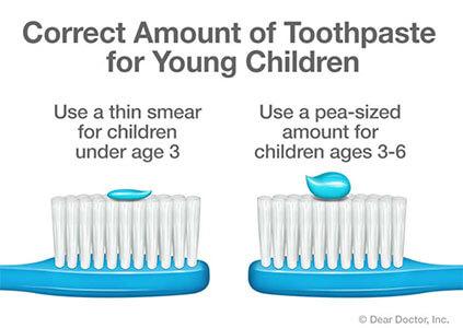 correct amount of toothpaste
